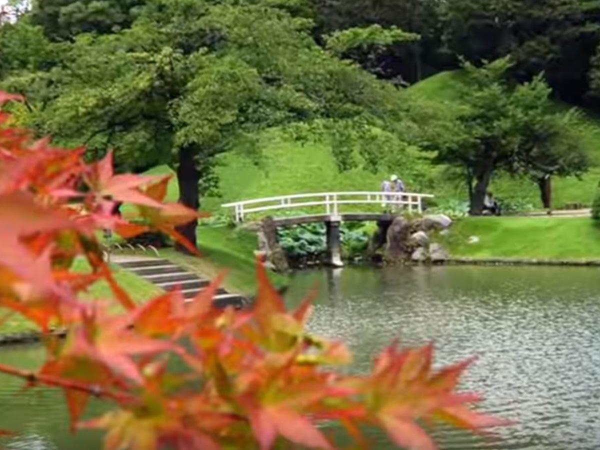 Miyagi Have Real Imagination Tohoku X Tokyo Japan