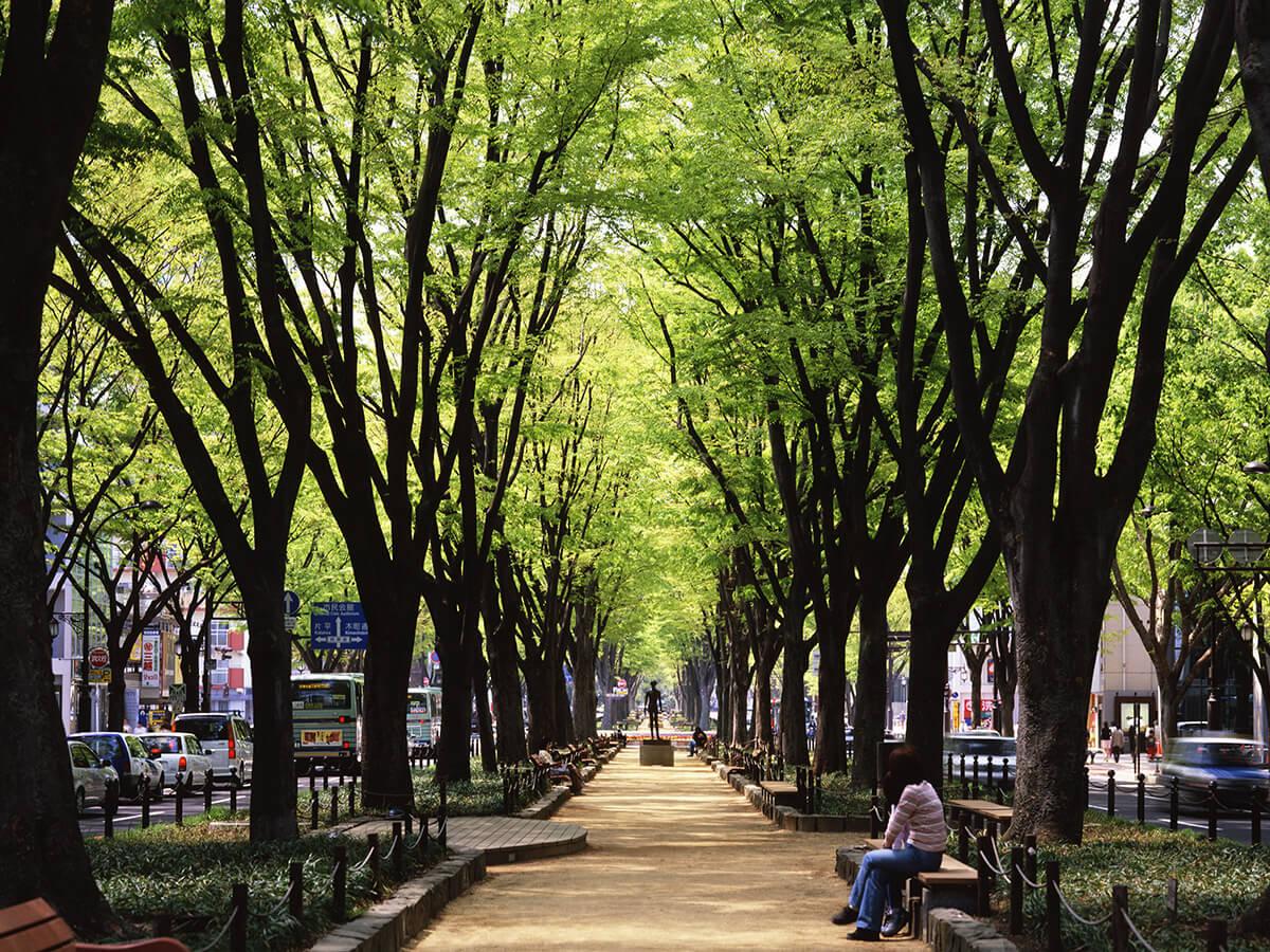 Avenue Jozenji-dori_3