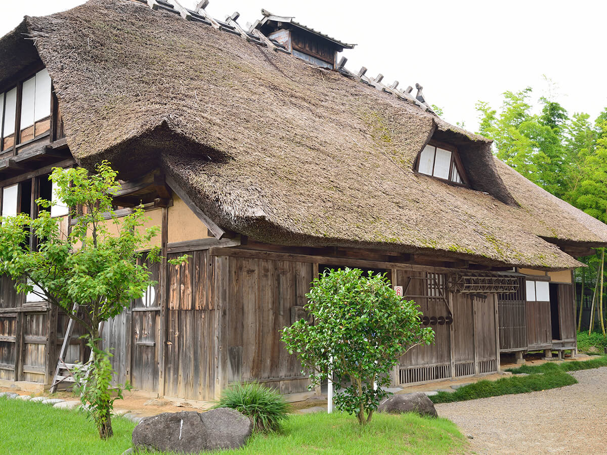 Chido Museum_3