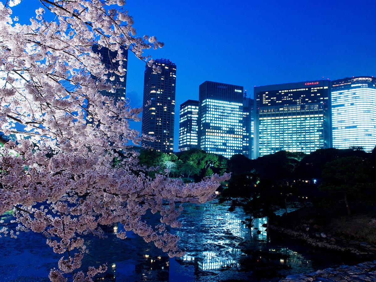 Hama-rikyu Gardens_3