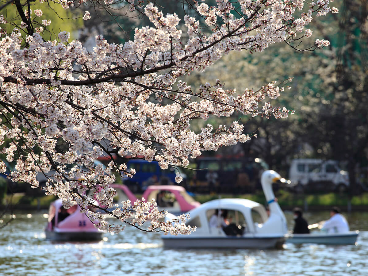 Ueno Park_3
