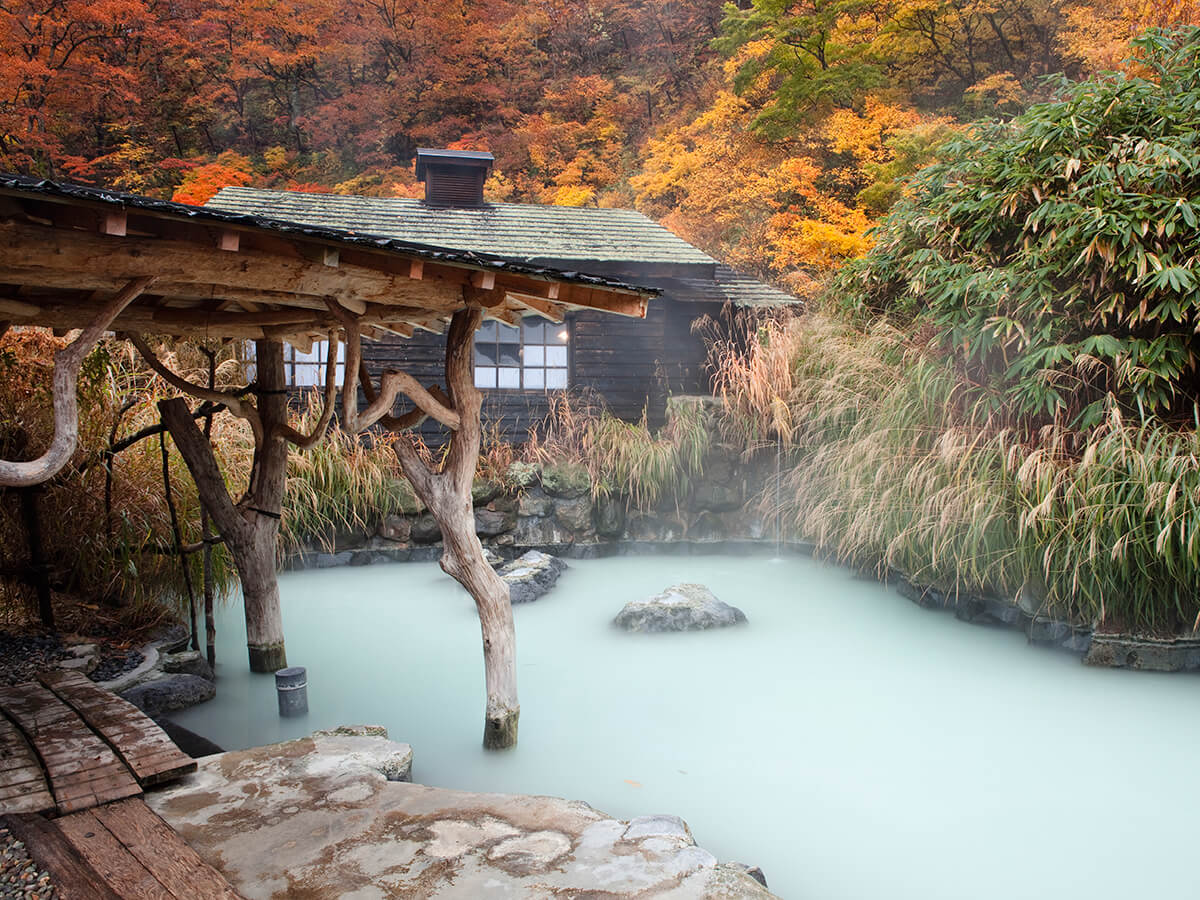 Nyuto-onsen-kyo Hot Springs Village_3