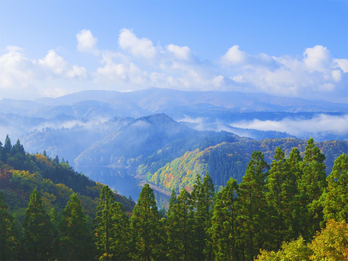 ภูเขาโมริโยชิซัน_4