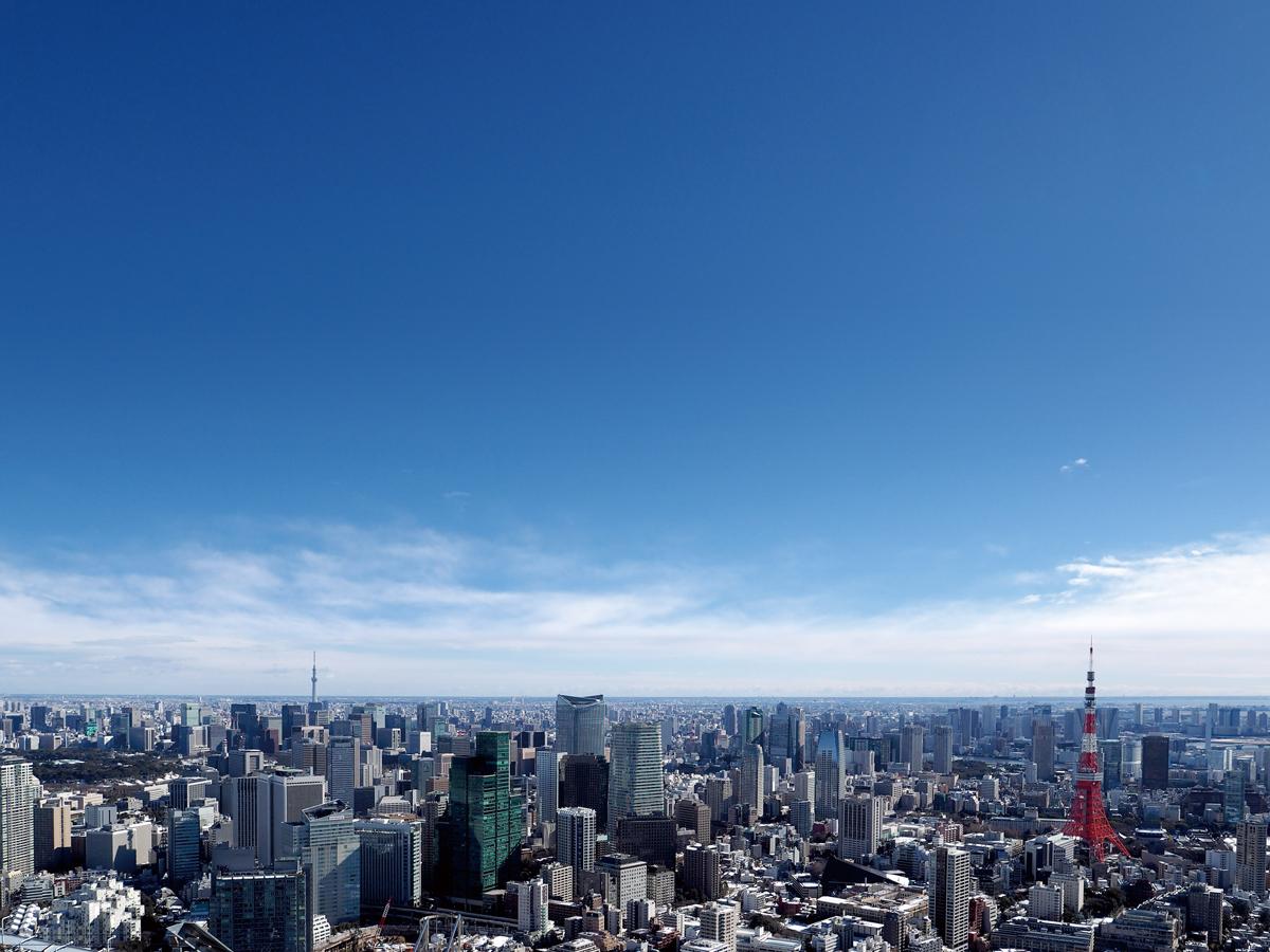 Tokyo City View_1