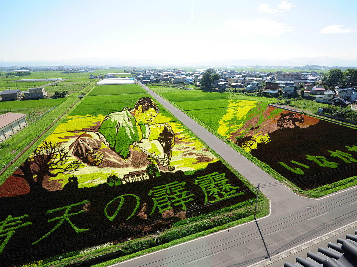 Rice Paddy Art_1