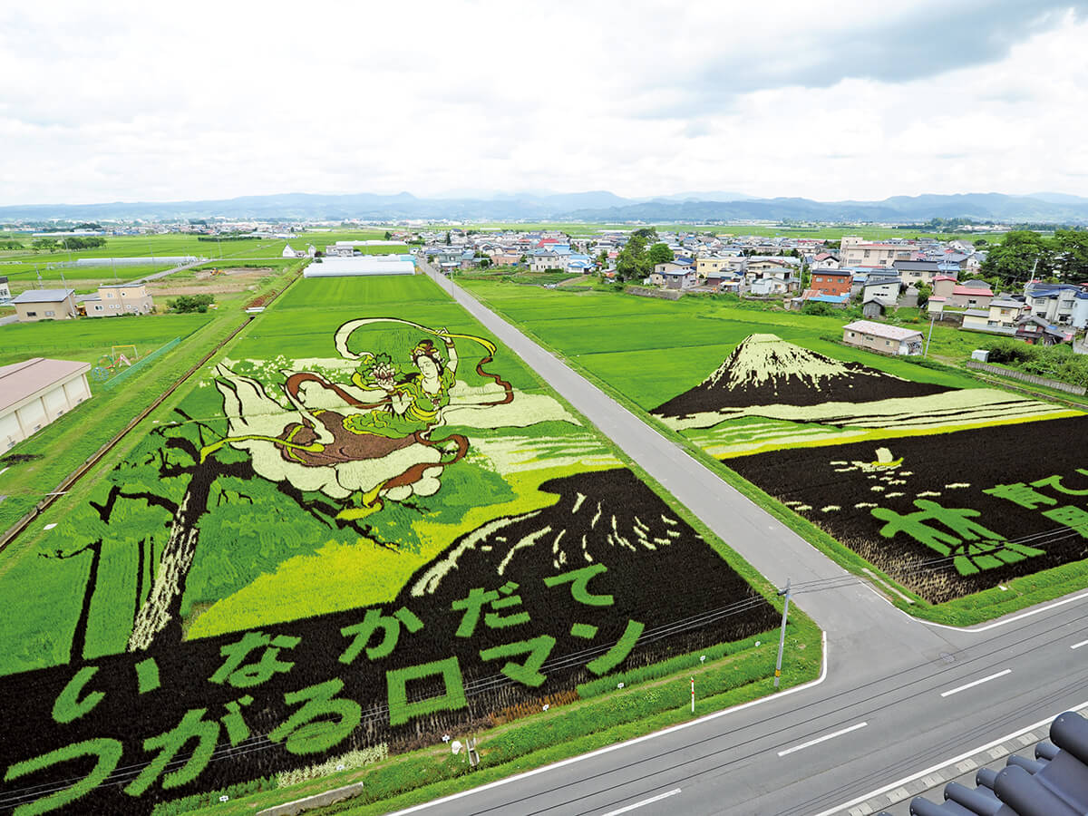 Rice Paddy Art_4