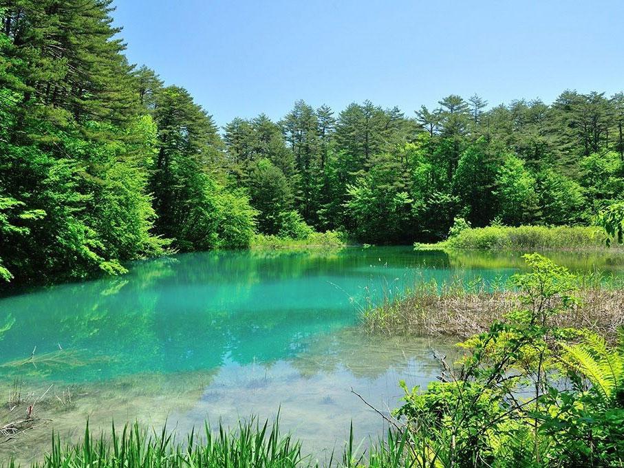 Les étangs de Goshiki-numa_1