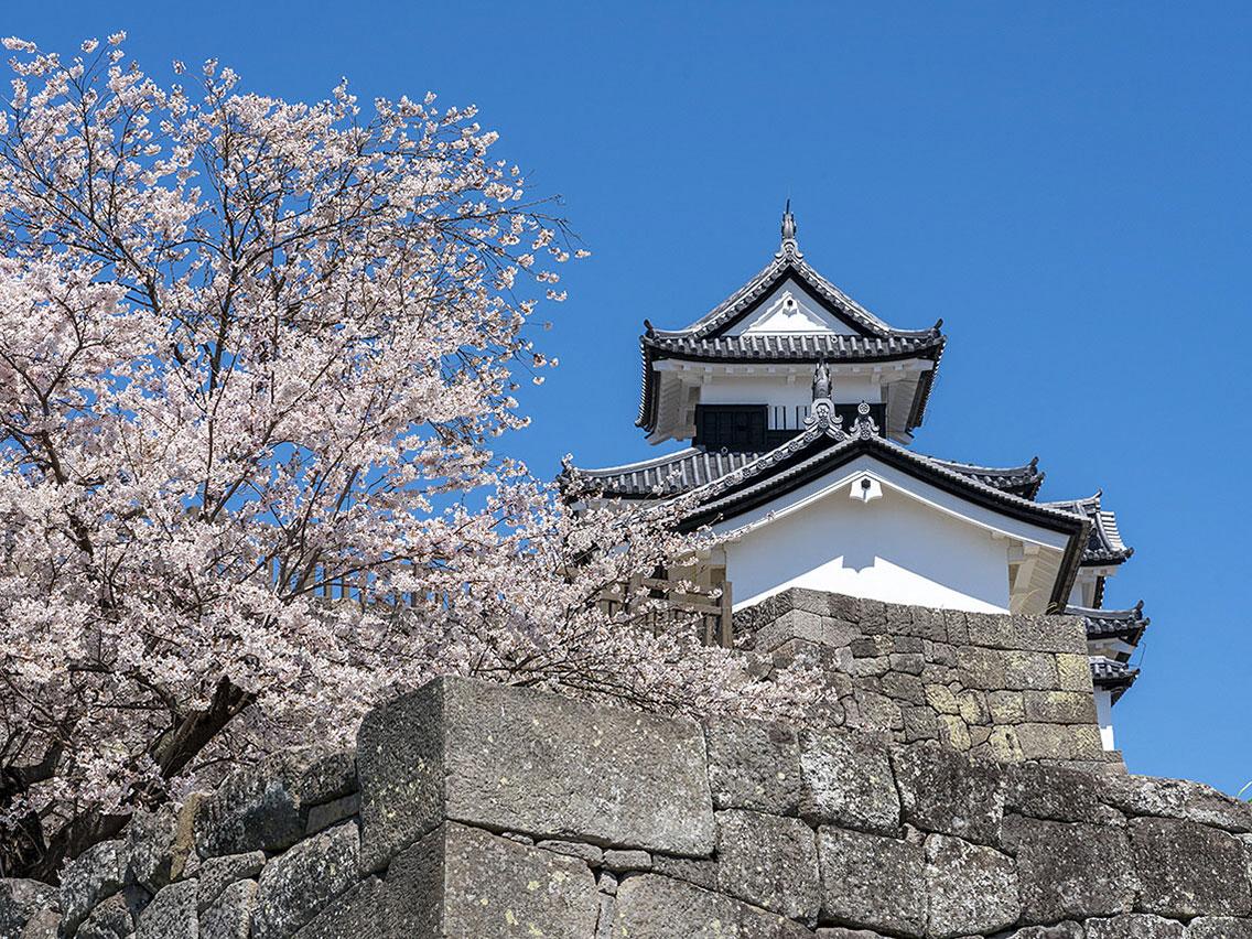 Komine-jo Castle_1