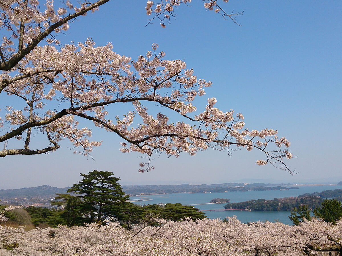Matsushima Islands Area_4