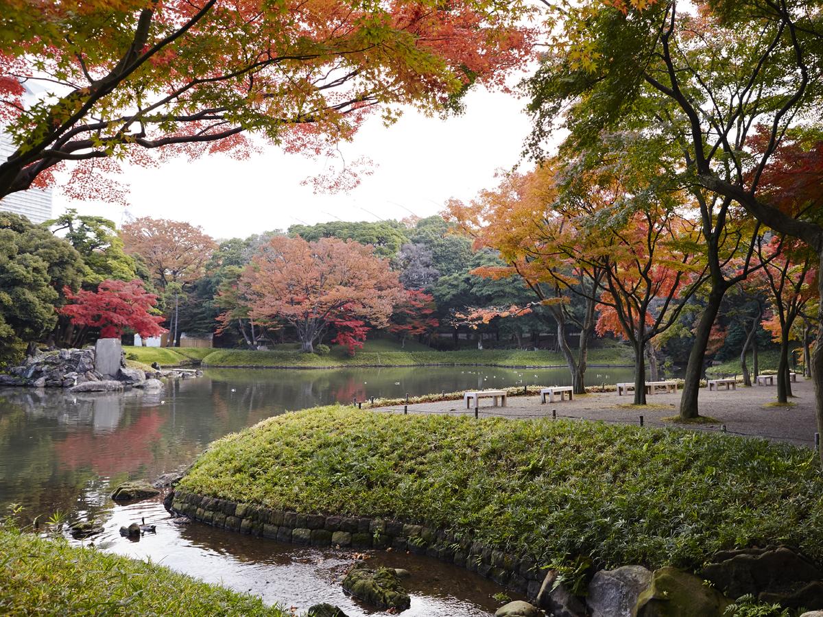 Koishikawa Korakuen Gardens_3