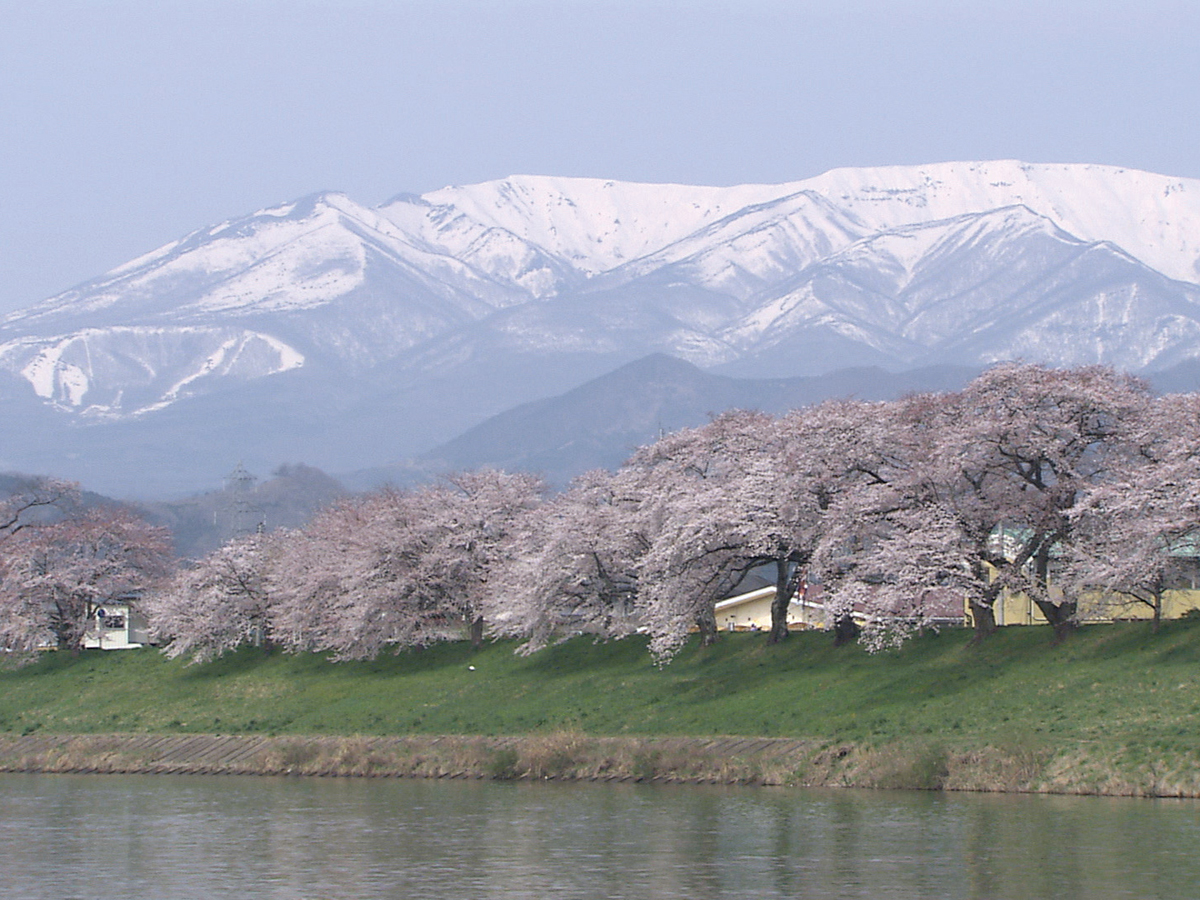 Hitome Senbonzakura (1,000 Sakura trees at a glance)_1