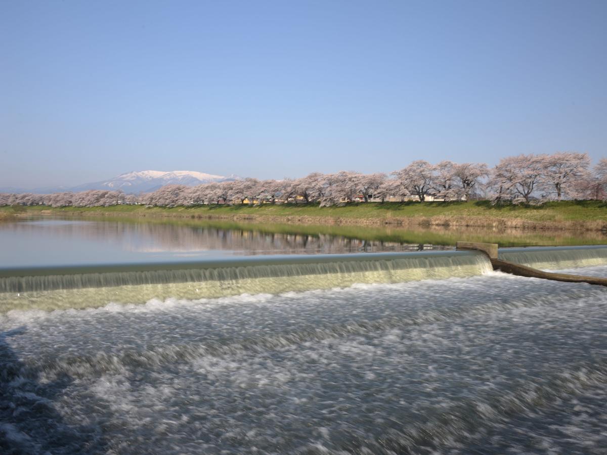 Hitome Senbonzakura (1,000 Sakura trees at a glance)_2