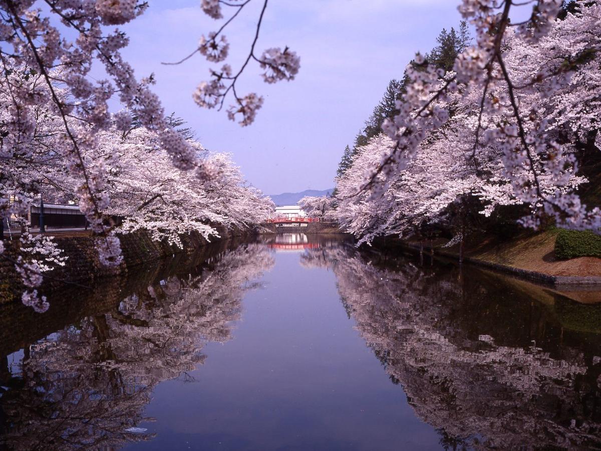 Sanctuaire Uesugi-jinja_3