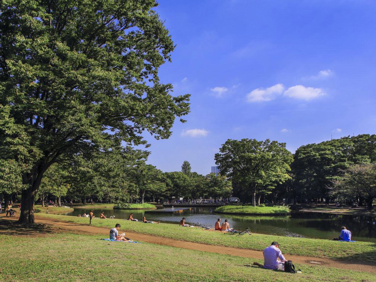 Yoyogi Park_1