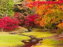 Motsu-ji Temple_3