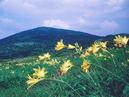 Mt. Moriyoshi_1