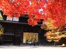 Hirosaki Park_3