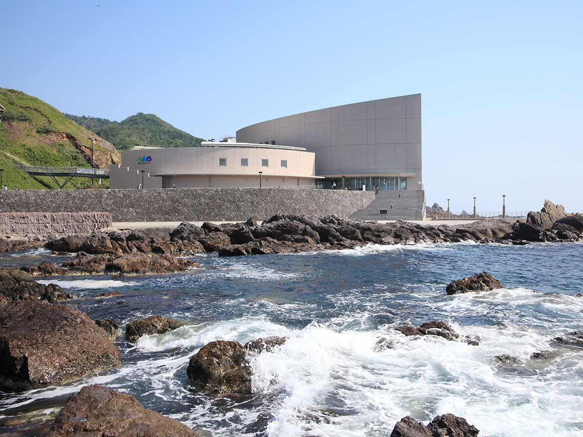Oga Aquarium GAO_4
