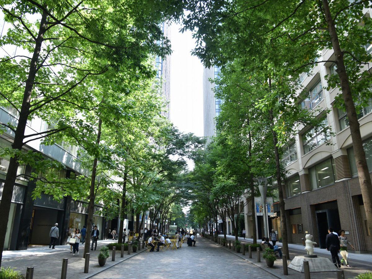 Marunouchi Naka-Dori Street_1