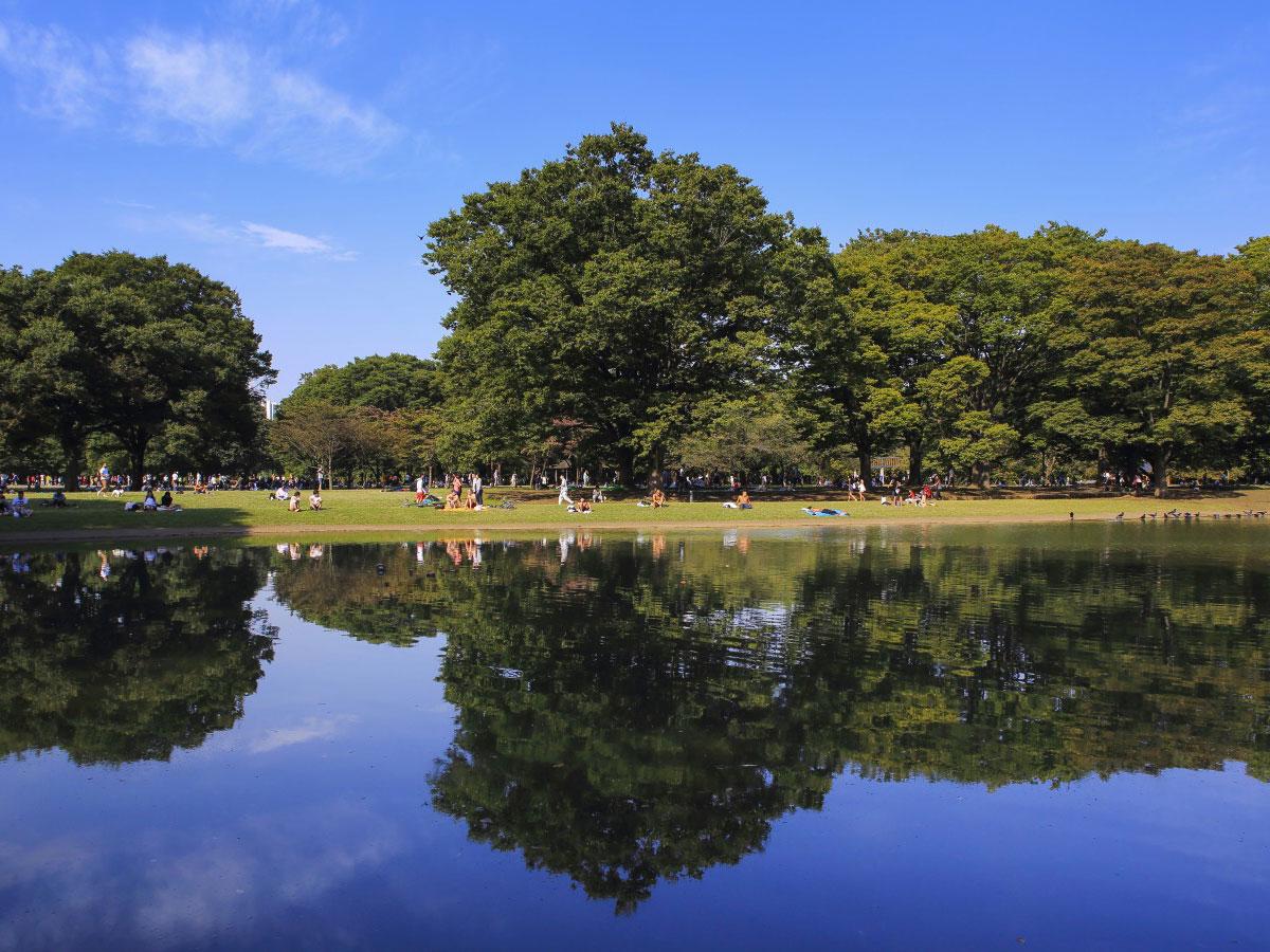 Parque Yoyogi_2