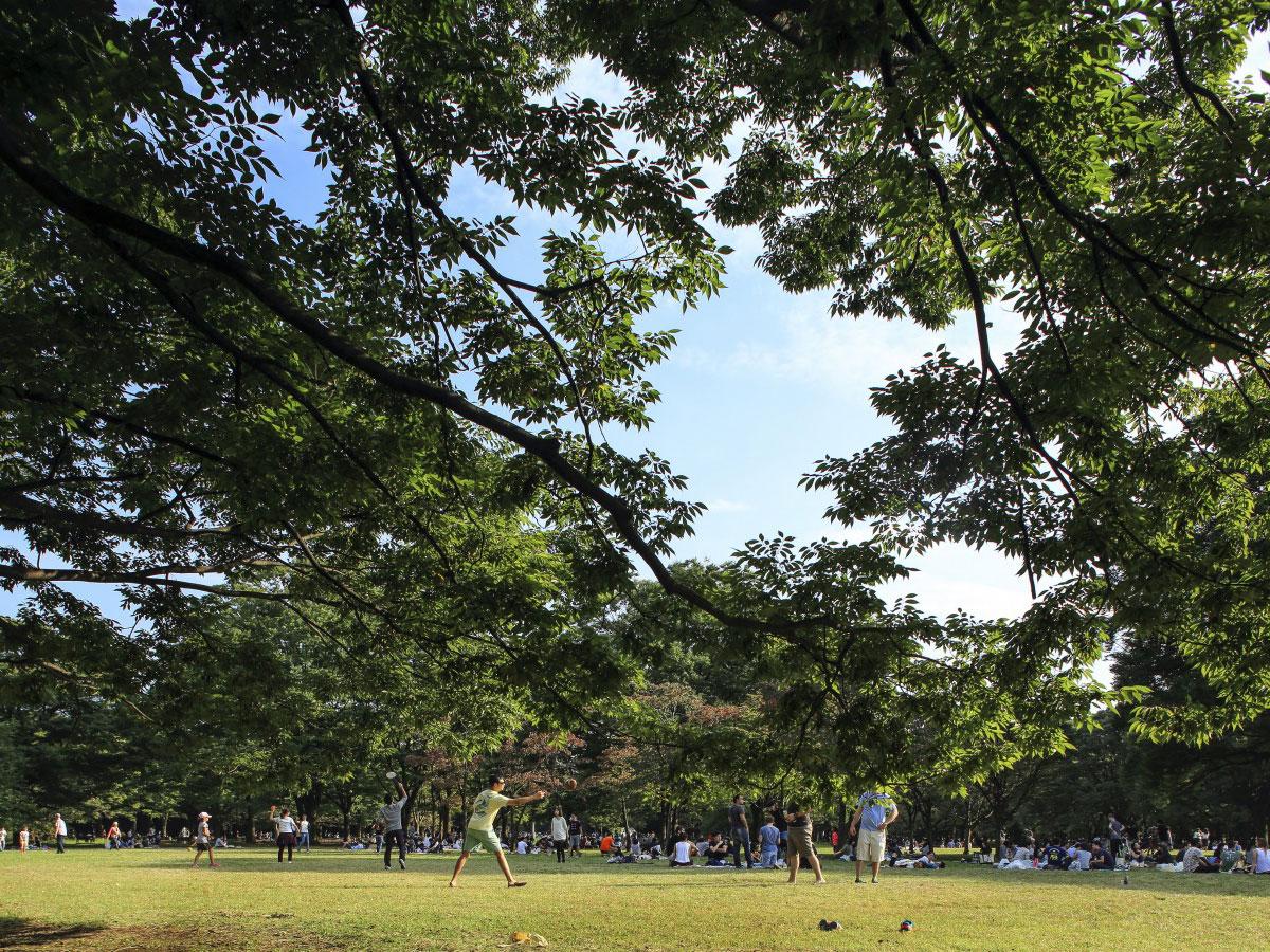Yoyogi Park_3