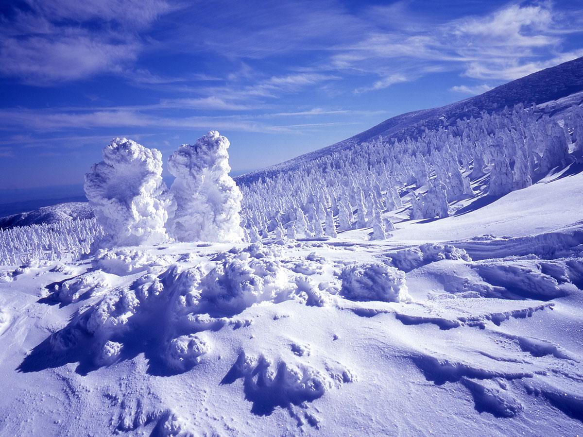 Zao Juhyo (Snow Monsters)_2